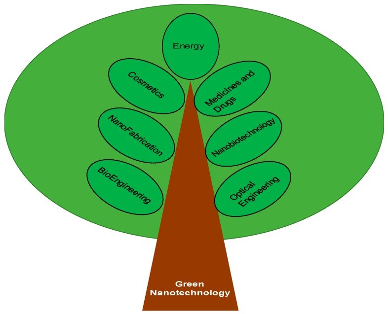 Green Nanotechnology: Advancement in Phytoformulation Research.Green Nanotechnology: Advancement in Phytoformulation Research.