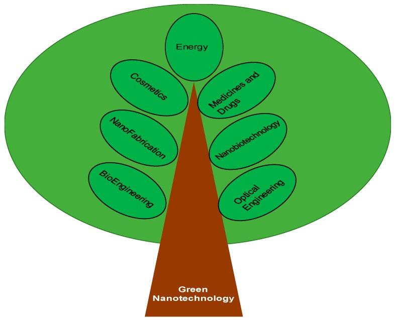 Green Nanotechnology: Advancement in Phytoformulation Research.Green Nanotechnology: Advancement in Phytoformulation Research.